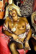 Bari Mistress Trans Mistress Elite 391 1863087 foto hot 11